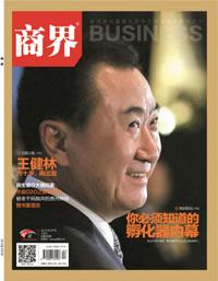 王健林:六十岁再出发