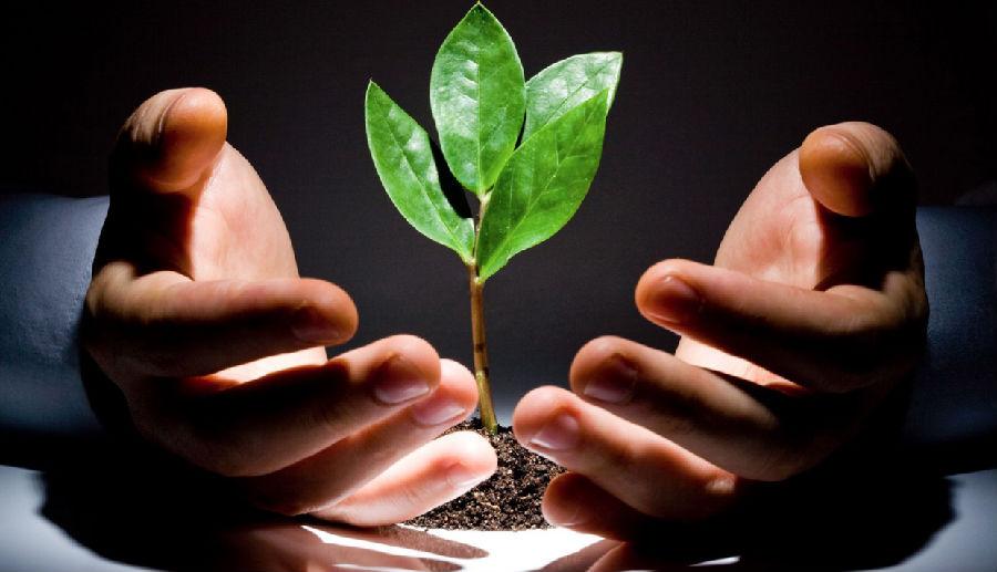 优秀投资者具备的三种基本特征