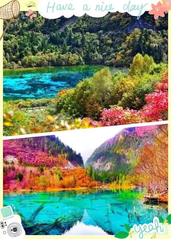 秋天的风景油彩画