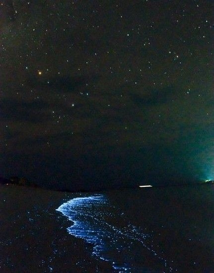 海边星空图片高清