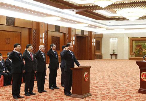 全国人大有关专门委员 依法进行宪法宣誓