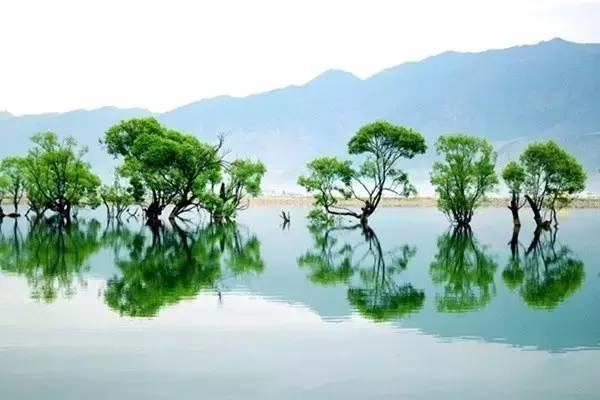 丽江是一个清唱心事的情感码头,那么鹤庆则是一个充满传说与神话的