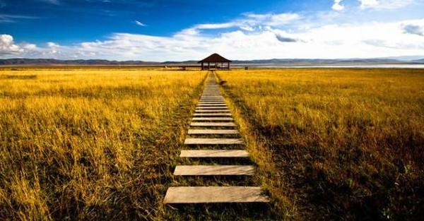 藏在宁夏的江南水乡,曾被美国cnn评为中国最美旅行地之一.