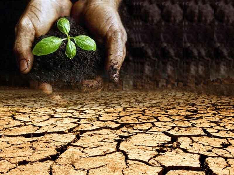 土壤污染治理万亿市场规模开启 3股望享盛宴
