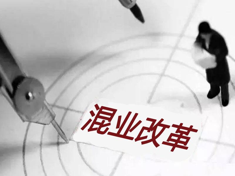 国金证券:2017年混改投资逻辑曝光 潜伏三大主线