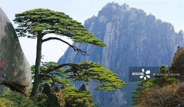 3、山西壶口瀑布   壶口瀑布是黄河上最大的瀑布,也是中国第二大瀑布。它以其在50元人民币上的优雅形象在中国享有盛誉。瀑布高20米,宽30米,位于山西省和陕西省的交界处。最佳游览时间为5-10月的汛期。届时,水量增大,流速激增,有时瀑布甚至拓宽至50米,尤为壮观。