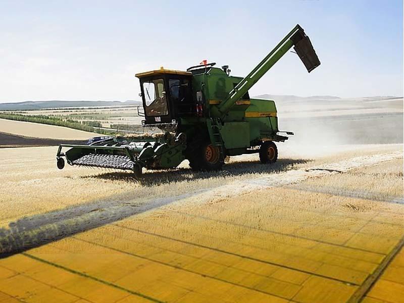 大豆 短期内上行乏力
