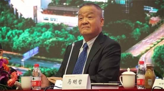 (平安集团董事长兼首席执行官马明哲)-从一次股东大会,看马明哲
