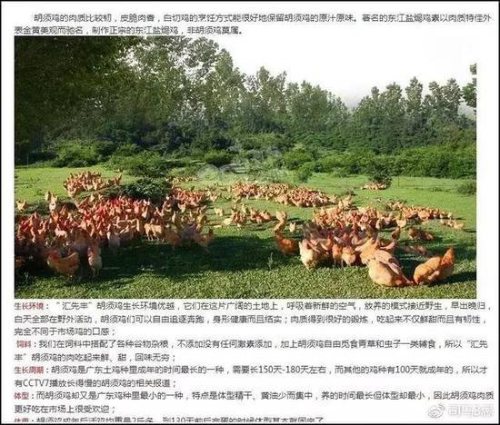 广东汇先丰农牧官网图