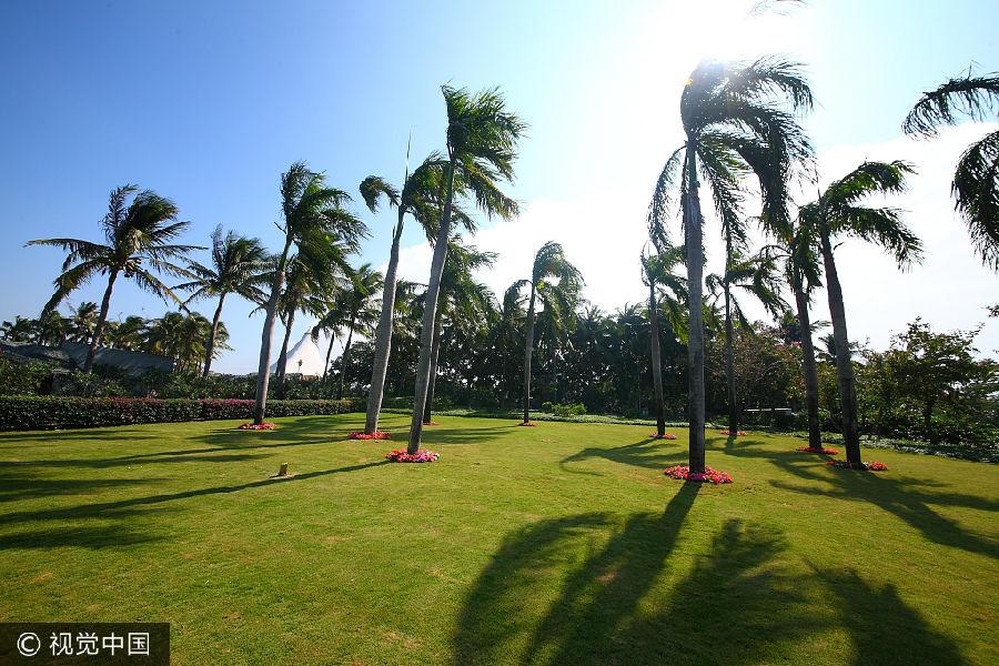 地处海南岛北部的海口市,常住人口达到224万,是海南省政治,经济