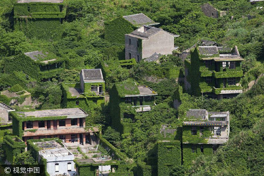 """这就是浙江舟山嵊泗嵊山岛后头湾村,一个 """"长满爬山虎,宛如绿色童话"""