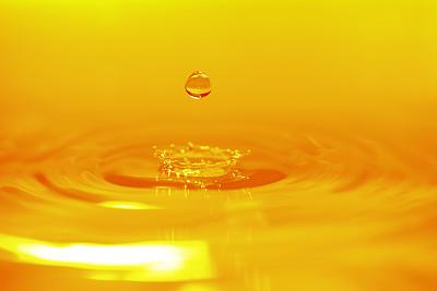 棕榈油 领涨国内油脂市场