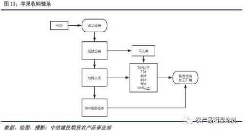 苹果5电路分布图