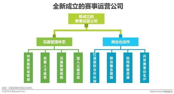 2019年中国电子竞技行业研究报告门球场尺寸标准20米图片