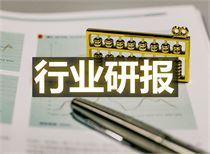 12月21日晚間重要行業研究匯總(附股)