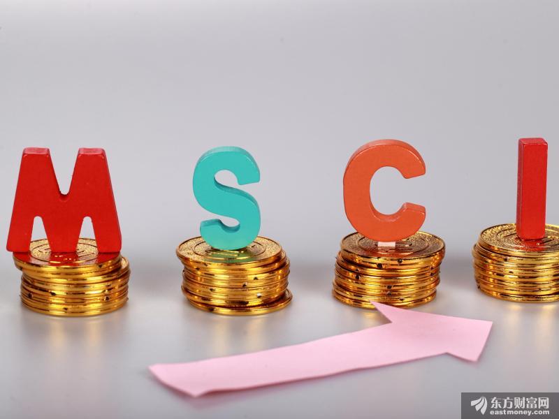 MSCI公布半年度指数审议结果