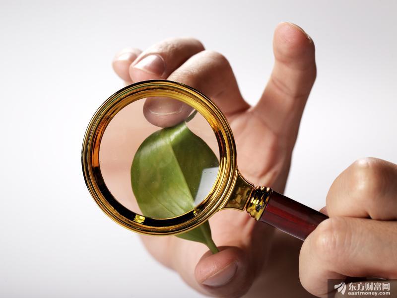 深交所明确创业板股票及存托凭证证券简称及标识