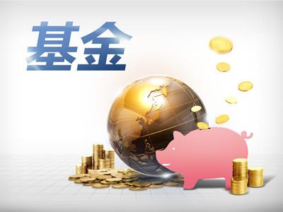 加入驰援上市公司阵营 东莞计划成立上市莞企发展投资基金