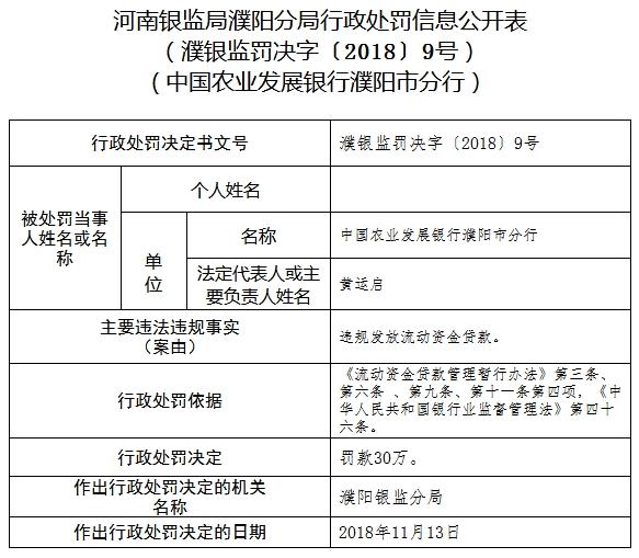 农业发展银行濮阳违法发放流动资金贷款