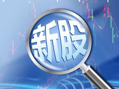 姜洋:会从IPO等方面重点支持创新引领示范型企业