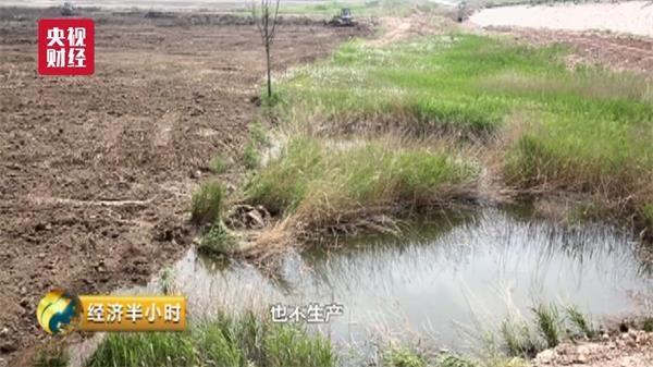 时时彩大概率期期中:88岁袁隆平再创奇迹:这种水稻至少解决8000万人粮食问题!