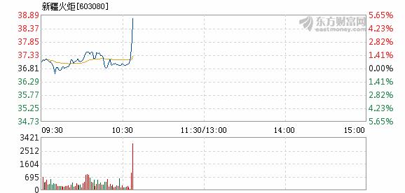 新疆火炬6月12日盘中涨幅达5%