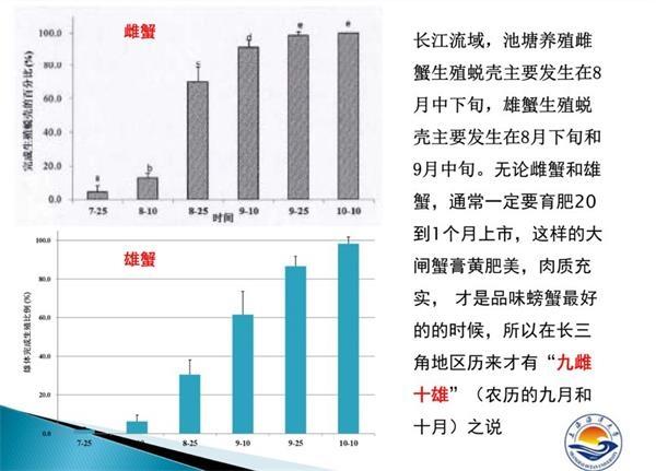 """大闸蟹乱象调查:价格跳水质量下滑 """"纸螃蟹""""横行"""