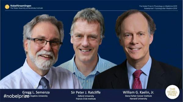 诺贝尔生理学或医学奖揭晓 3位科学家分享该奖项
