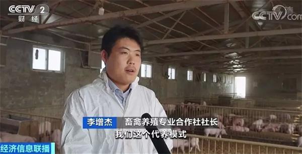 """深度访谈:""""云养猪""""形式来了!你买仔猪 合作社养!肉价会廉价吗?"""
