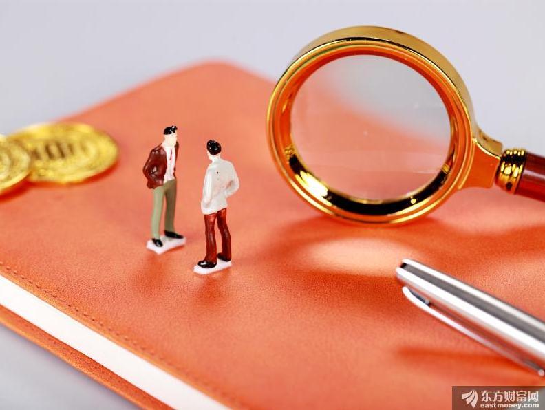 杨德龙:新证券法全面推行注册制、大幅提高违法成本