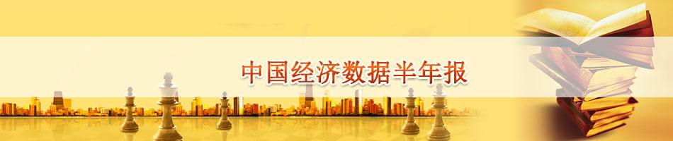 中国经济数据半年报