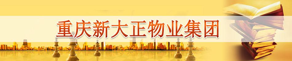重庆新大正物业集团IPO