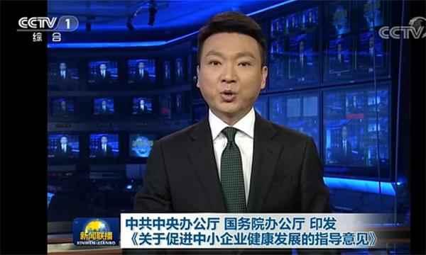 中办国办印发《关于促进中小企业健康发展的指导意见》
