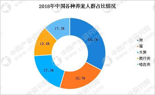 """宠物食品企业福贝""""获近3亿融资 一文看懂宠物行业市场现状及发展前景(附图表)"""