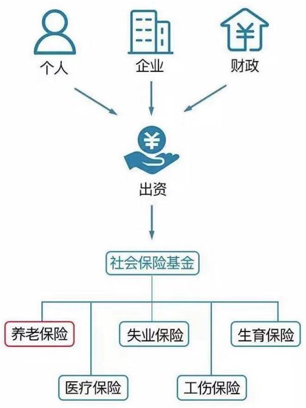 A股神秘操盘手:社保基金VS养老基金 炒股水平哪家强?