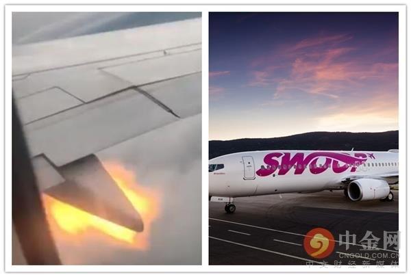 加拿大客机遭鸟击后引擎喷火 乘客受惊绝望留遗言