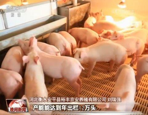 节日期间蔬菜猪肉供给怎样?价钱是不是安稳?一同去看 赤峰信息网 第4张