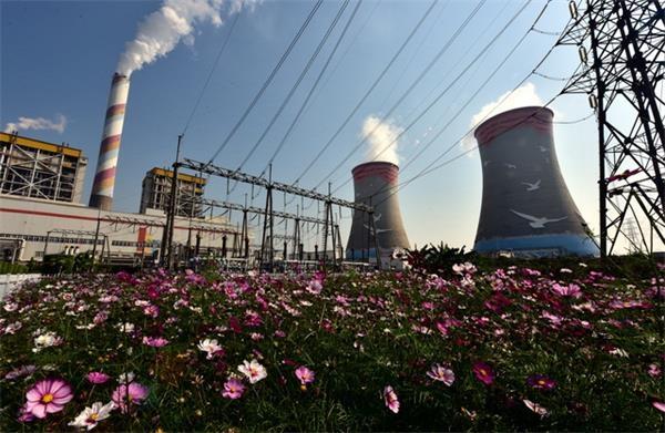 广州华润热电有限公司厂区。摄影/章轲