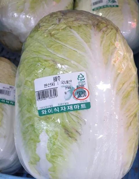 《【恒达平台网】韩国大白菜63元一棵 汉堡里的西红柿不见了!韩媒:简直是吃钻石》