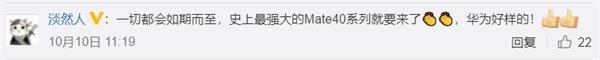 """华为Mate 40要来了 搭载""""绝版""""麒麟芯片!iPhone 12也要来了 买哪图2"""