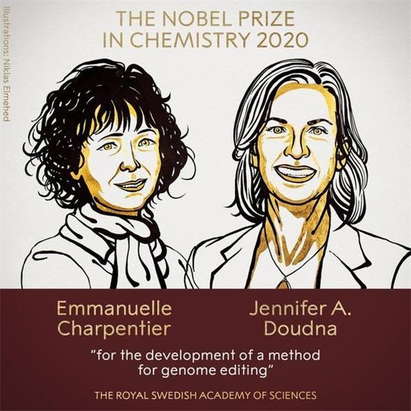 2020年诺贝尔化学奖揭晓!2位女性分享奖项