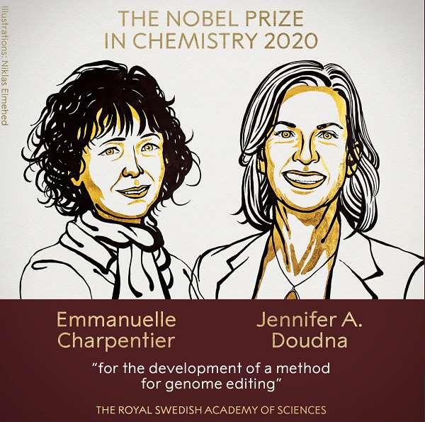 诺贝尔化学奖来了!因发现高效基因编辑技术 A股基因板块市值超万亿