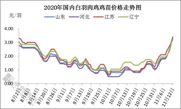 12天内鸡苗价格疯涨超150% 强势行情能持续多久?