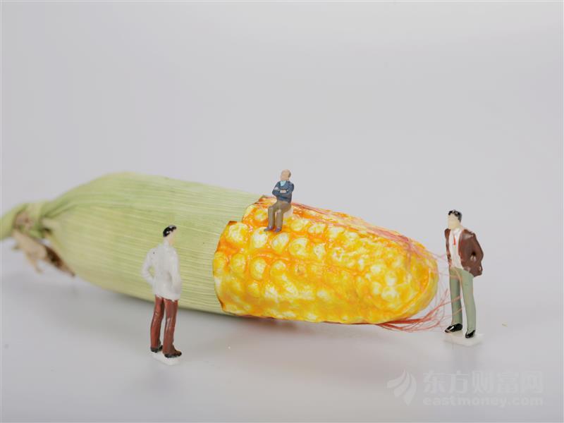 """""""地主家""""也没余粮了?疫情加剧全球粮食危机"""