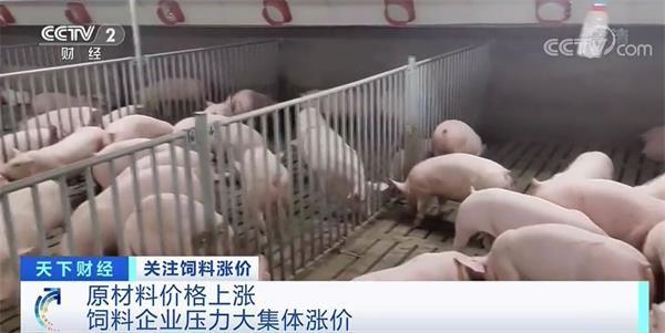 涨价函密集发布!多种饲料为何集体涨价?
