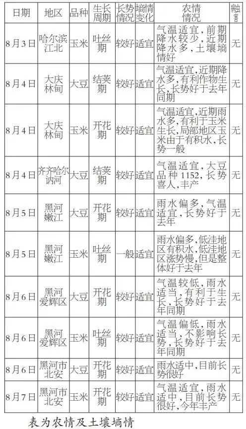 一线调研日志:2020年黑龙江大豆、玉米长势较好