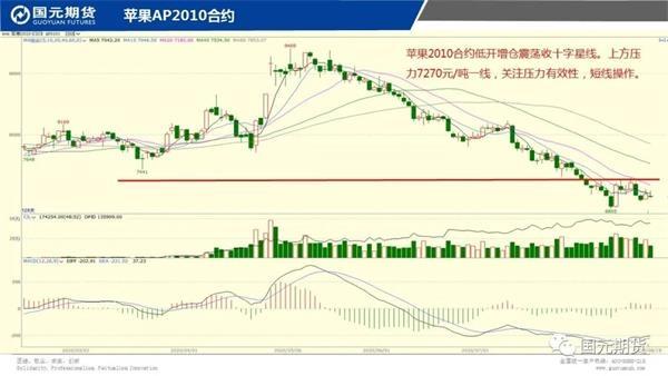 机构论市:铜价强势上升关注53000一线表现