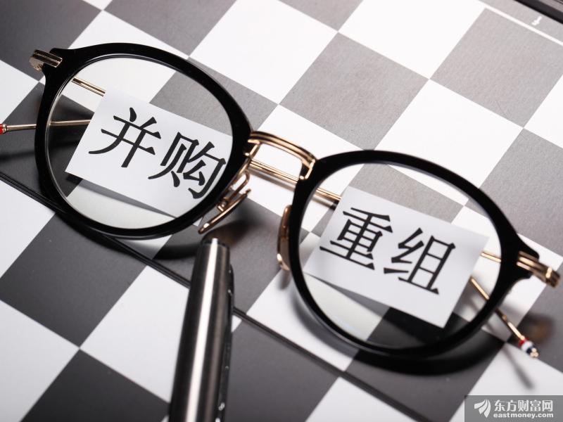沪市公司监管锐评第三十九期 |变革与趋势:市场化视角下的重组上市