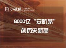 """6000亿""""安防茅""""创历史新高"""