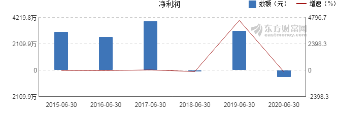 维宏股份:【图解中报】维宏股份2020年上半年净利润
